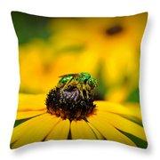 Green Sweat Bee Throw Pillow