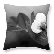 Green Sweet Pea Flower In Black And White Throw Pillow