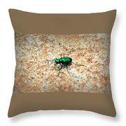 Green Tiger Beetle Throw Pillow