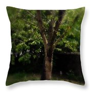 Green Tree In Park Throw Pillow