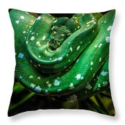 Green Tree Python Throw Pillow