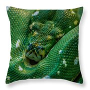 green tree python Macro Throw Pillow