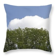 Green Tree Stands Out Against The Blue Sky Throw Pillow