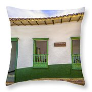 Green Trim Throw Pillow