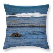 Green Turtle Surf Throw Pillow