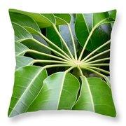 Green Umbrella Throw Pillow