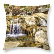 Green Valley Falls Winter Throw Pillow