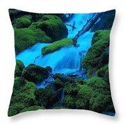 Green Velvet Moss Throw Pillow