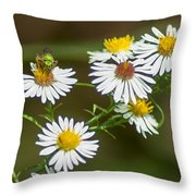 Green Wasp And Daisies Throw Pillow