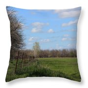 Green Wheat Field With Blue Sky Throw Pillow by Robert D  Brozek