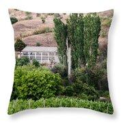 Green Wine Yard Throw Pillow
