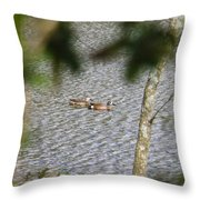 Green Winged Teal 2 Throw Pillow