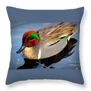 Green Winged Teal  Duck  Throw Pillow