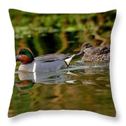 Green-winged Teal Pair Throw Pillow