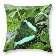Green Wings 2 Throw Pillow