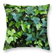 Green With Ivy Throw Pillow