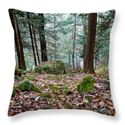 Green Woodland Beauty Throw Pillow
