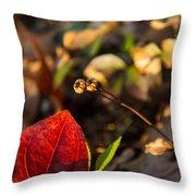 Greenbriar Leaf And Wintergreen Seedpod Throw Pillow