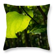 Greenbrier Glowing In The Sun Throw Pillow