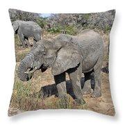 Greener Pastures V2 Throw Pillow