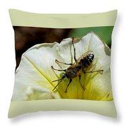 #greeneyes Throw Pillow