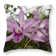 Greenhouse Ruffly Orchids Throw Pillow