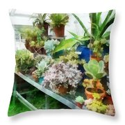 Greenhouse With Cactus Throw Pillow