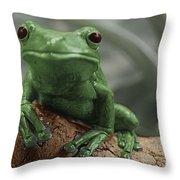 Greeny 4 Throw Pillow