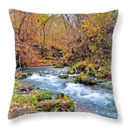 Greer Spring In Fall Throw Pillow
