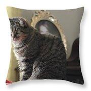 Greeting Card Cat Throw Pillow