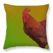Greeting The Sun Throw Pillow