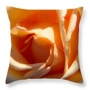 Greetings From Texas Featured 2 Throw Pillow