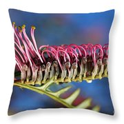 Grevillea Pink Australian Throw Pillow