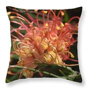 Grevillea  Superb Throw Pillow