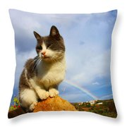 Grey Cat And Rainbow Throw Pillow