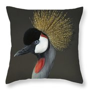 Grey Crowned Crane Portrait Throw Pillow