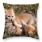 Grey Fox Kitts At Play Throw Pillow