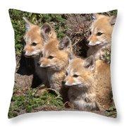 Grey Foxes At Den Throw Pillow