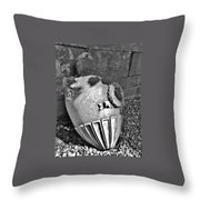 Scotland_grey Friars Urn Throw Pillow