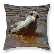 Grey Goose Throw Pillow
