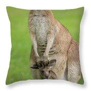 Grey Kangaroo And Joey  Throw Pillow