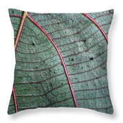 Grey Leaf With Purple Veins 2 Throw Pillow