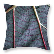 Grey Leaf With Purple Veins Throw Pillow
