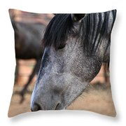 Grey Mare Throw Pillow
