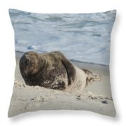 Grey Seal Pup On Beach Throw Pillow