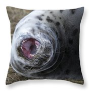 Grey Seal Pup Yawning Throw Pillow