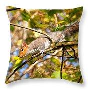 Grey Squirrel - Impressions Throw Pillow