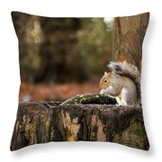 Grey Squirrel On A Stump Throw Pillow
