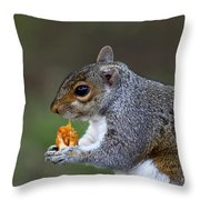 Grey Squirrel Tucking In Throw Pillow