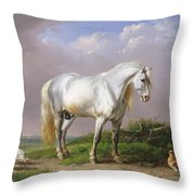 Grey Stallion Throw Pillow